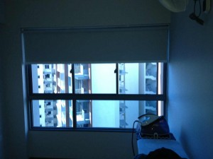 Lake Vista - Roller Blinds (7)
