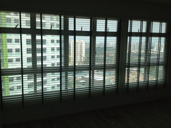 Easy Lift Blinds or Privacy System Venetian Blinds?
