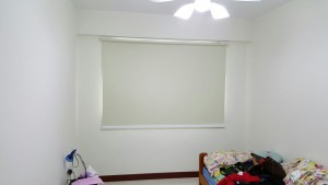 Rivervale Delta Roller Blinds 4
