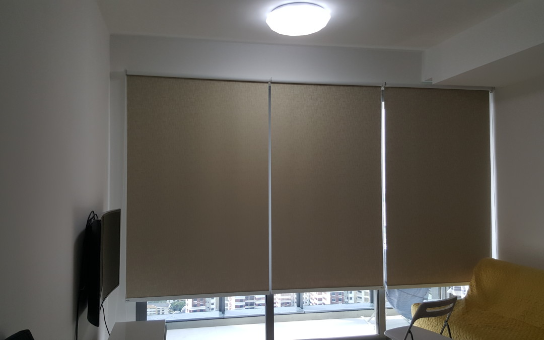 Echleon – Blackout Roller Blind