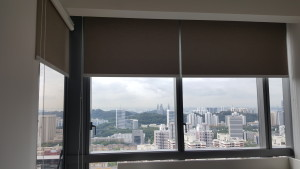 Echleon - Blackout Roller Blinds (4)