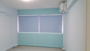 Mcnair Rd - Blue Roller Blinds (2)