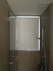 Blackout blinds at toilet (1)
