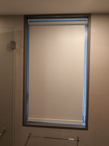 Blackout blinds at toilet (2)