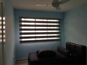 Semi Auto (Hold Down) Combi Blinds (7)