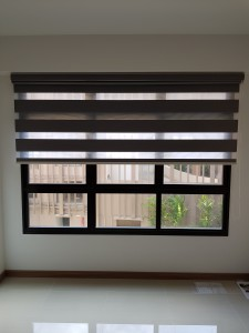 Korea Blinds - Dualshade (3)