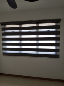 Korea Blinds - Dualshade (5)