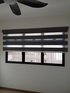 Korea Blinds - Dualshade (6)