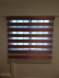 Korean Blinds - Bio Glory BG4508 Wine @ 4 sago lane (15)