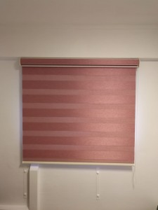 Korean Blinds - Bio Glory BG4508 Wine @ 4 sago lane (16)