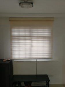 Korean Blinds - Bio Glory BG4508 Wine @ 4 sago lane (19)